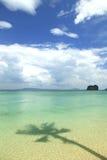 与椰子树的阴影的美丽的海滩 免版税库存图片