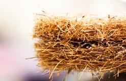 与椰子须根的床垫 椰子粗硬纤维 床垫的生产的被磨碎的椰子壳 纹理,自然本底 免版税库存照片