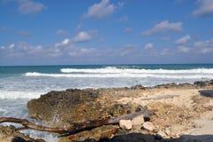 与概略的海浪的热带海滩 免版税库存照片