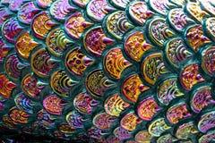 与概略的纹理的五颜六色的鱼鳞样式 库存图片
