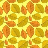 与榆木和山毛榉秋叶的无缝的样式 库存例证