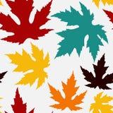 与槭树叶子的无缝的模式 库存照片