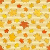 与槭树叶子的无缝的秋季样式 库存图片