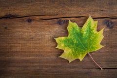 与槭树叶子的秋天木背景 免版税库存图片