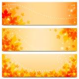与槭树叶子的秋天横幅 库存照片