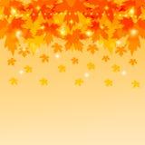与槭树叶子的秋天背景。 免版税库存照片