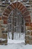 与槭树的哥特式石门方式在冬天 库存照片