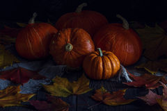 与槭树的秋天南瓜在木背景离开 免版税库存照片