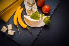 与模子、西红柿、蓬蒿和蜜蜂花的乳酪绿化,在一个石盘子的炽热胡椒在深灰背景 免版税库存照片