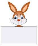 与横幅的兔子 皇族释放例证