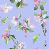 与樱桃分支的水彩无缝的样式 免版税库存图片