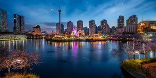 与樱花公园和塔的夜都市风景 免版税库存照片