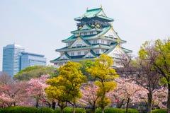 与樱花的大阪城堡 美好日本的春天scen 图库摄影