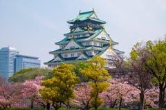 与樱花的大阪城堡 美好日本的春天scen 免版税图库摄影