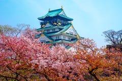 与樱花的大阪城堡 美好日本的春天scen 免版税库存照片