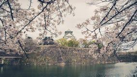 与樱花的日本大阪城堡 日本春天视图  v 免版税库存图片