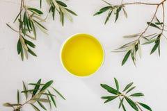 与橄榄树枝的额外处女橄榄油 免版税库存图片