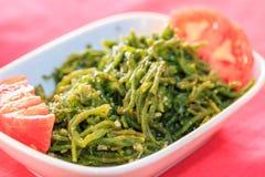 与橄榄油和蕃茄开胃菜的海草在土耳其烹调 库存图片