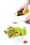与橄榄油的开胃新鲜的蔬菜沙拉 图库摄影