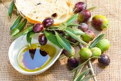 与橄榄油的Ciabatta面包。 库存照片