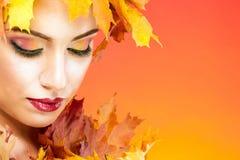 与橙色叶子的秋天构成 免版税库存图片
