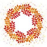 与橙色和红色叶子和分支的典雅的花卉花圈 免版税库存图片