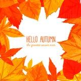 与橙色和红色叶子的明亮的秋天框架 免版税图库摄影