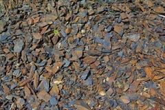 与橙色小岩石纹理,背景的灰色 夏天 Susuman kolyma 库存照片