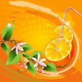 与橙色片式的背景 皇族释放例证