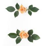 与橙色玫瑰和绿色叶子的装饰框架 平的位置 顶视图 免版税库存图片