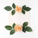 与橙色玫瑰和绿色叶子的装饰框架 平的位置 顶视图 库存照片