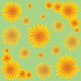 与橙色花的无缝的样式 免版税库存照片