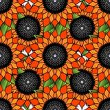 与橙色花的明亮的五颜六色的花卉无缝的样式 向量例证