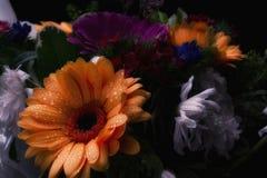 与橙色花的花束 免版税库存照片