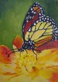 与橙色花的黑脉金斑蝶 图库摄影