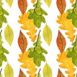 与橡子和橡木叶子的秋天无缝的样式 水彩设计模板 库存图片