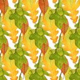 与橡子和橡木叶子的水彩无缝的样式 图库摄影