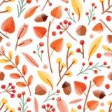 与橡子,坚果,灯笼果,在白色背景的荚莲属的植物莓果的秋天无缝的样式 季节性传染媒介 皇族释放例证