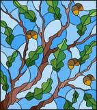 与橡木分支的彩色玻璃例证与未成熟的橡子和叶子生叶 库存照片