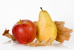 与橡木叶子和桂香的秋天果子 图库摄影