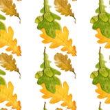 与橡木叶子和橡子的手拉的水彩样式 无缝的印刷品 库存照片