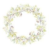 与橡木橡子和叶子的水彩花圈 隔绝在白色b 库存照片