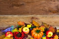 与橡木的感恩焦点离开,南瓜,苹果,丁香 免版税库存照片