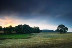 与橡木6的风景 免版税库存图片