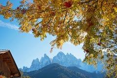 与欧洲花楸的不可思议的松弛秋天风景在backgro 图库摄影