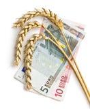 与欧洲货币的麦子耳朵 库存图片