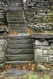 与死的叶子的石楼梯在秋天 免版税库存照片