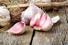 与残破的电灯泡的整个大蒜和在土气木b的桃红色丁香 免版税库存照片