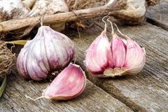 与残破的电灯泡的整个大蒜和在土气木b的桃红色丁香 免版税库存图片