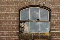 与残破的玻璃的老被放弃的窗口 免版税库存图片